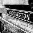 Fraser & Co Paddington Estate Agents