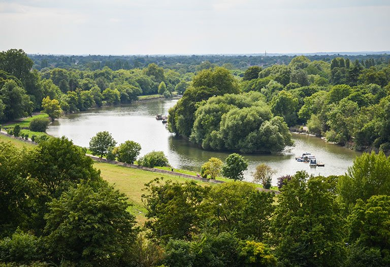 Kew Bridge and Brentford Area Guide